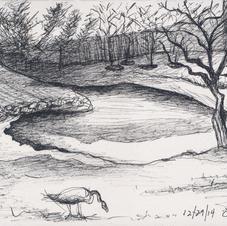 White Marsh 12-29-14