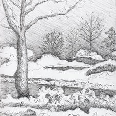 White Marsh Snow 3-7-15