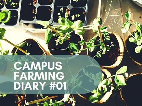 Campus Farming Diary #01