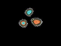 Talaroo Logo Design