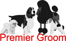 Premier Groom Show 2014