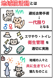 地域猫活動とは.png