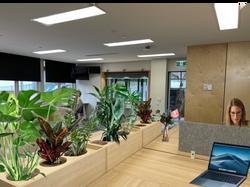 Admin office 1