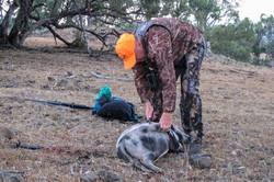 Pig & Menil doe PH Feb_2014-5