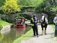 horse-drawn-canal-boat.jpg