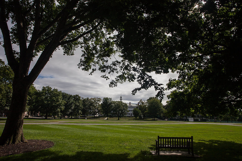 Dartmouth College Green by Peter Rintels