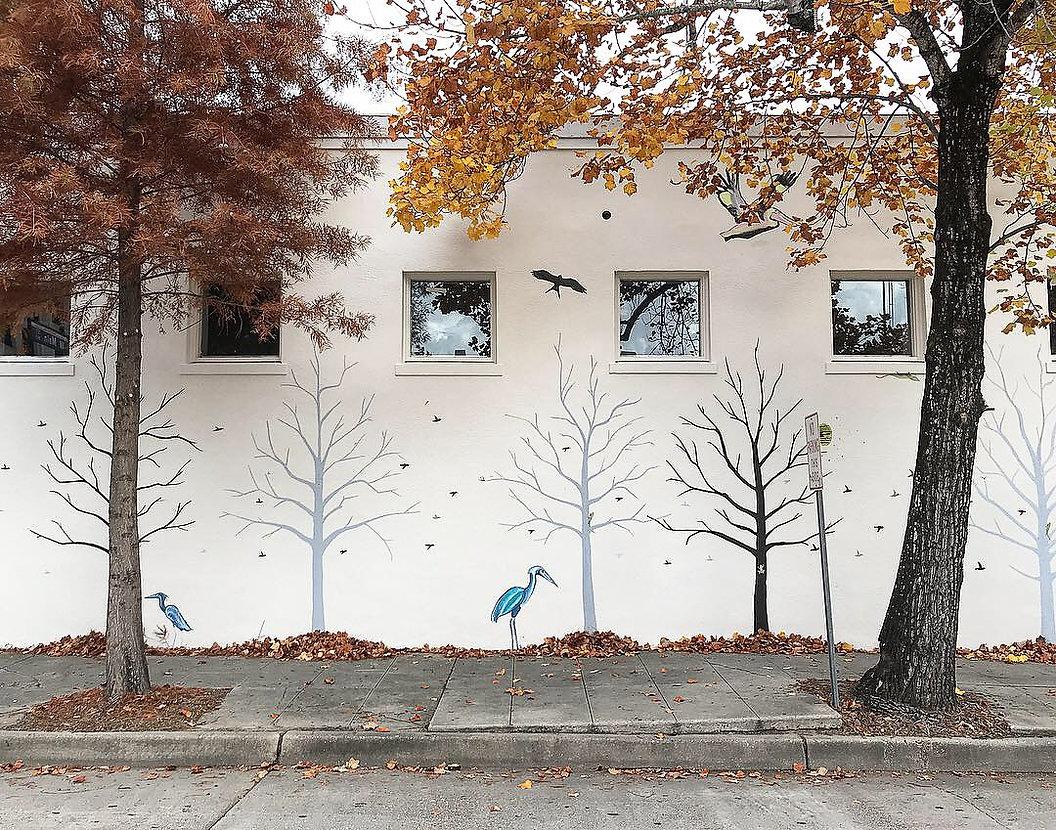 Urban Canvas Studio