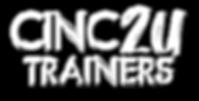 cinc2u trainers.png