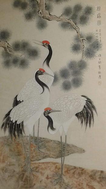 white-crane-kung-fu.jpg