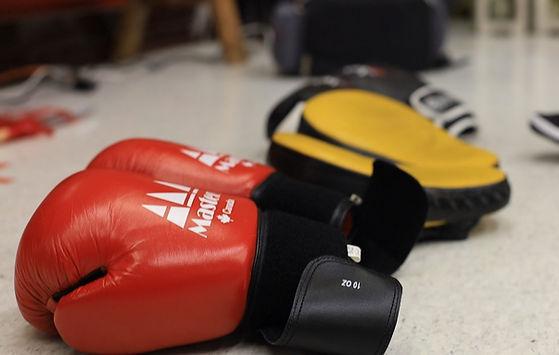 kung-fu-boxing-gloves_edited.jpg