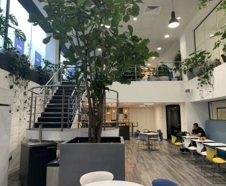 Office Interior, Newman Street, London