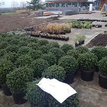 Private Garden, Bayford, Hertfordshire