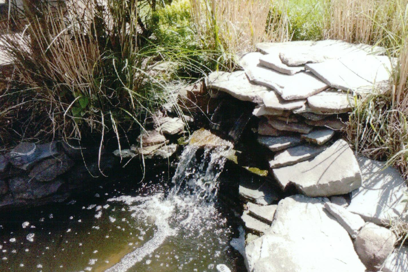 Blackfeld Fisheries Waterfalls