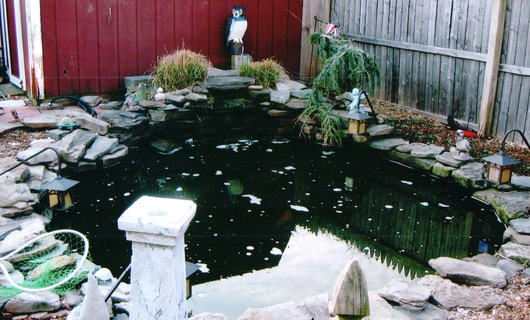 Blackfeld Fisheries Koi Ponds