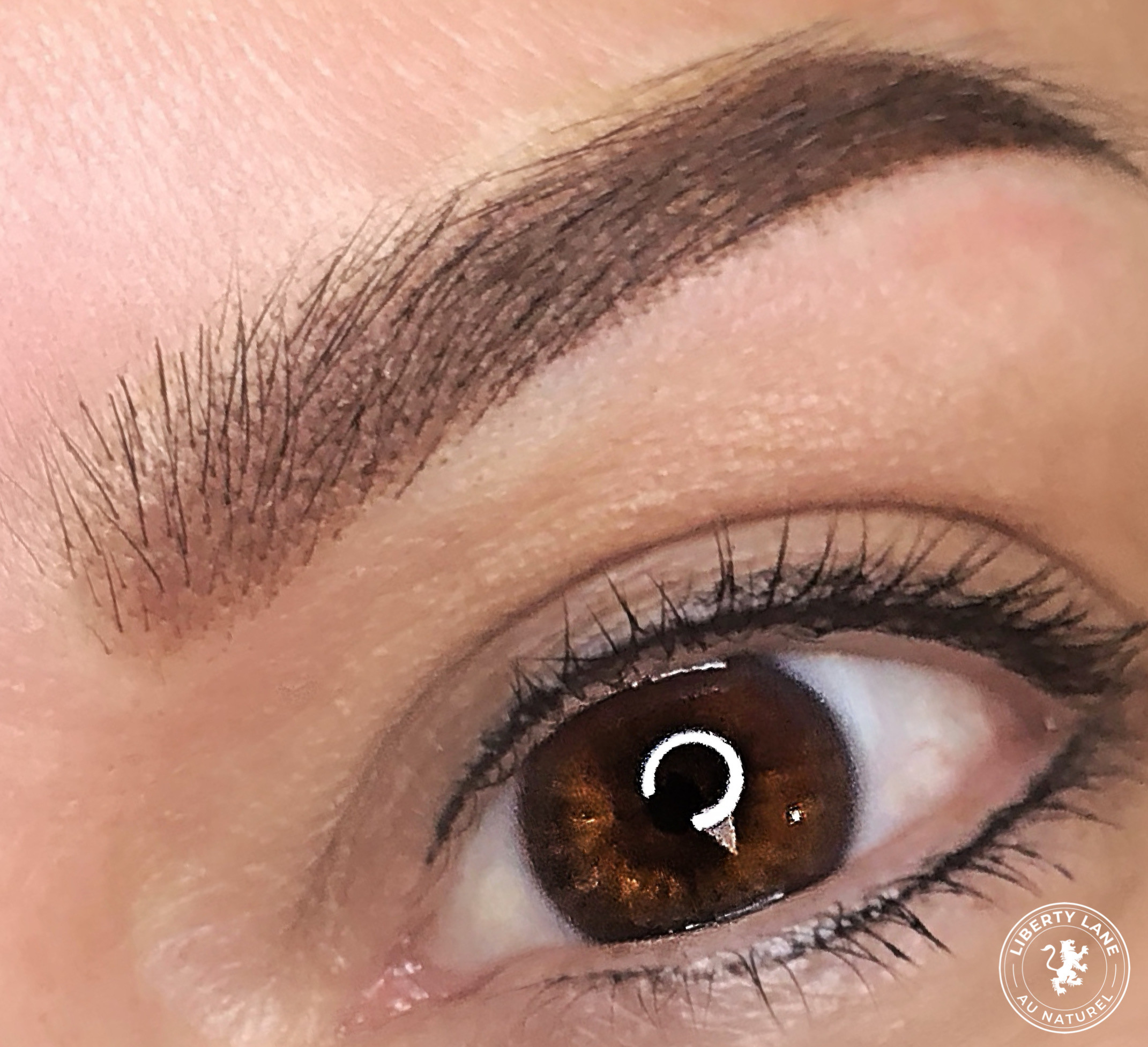 Ombre Micro-Shaded Brows