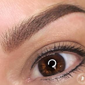Lash Line Eyeliner + Ombre Shade Brows