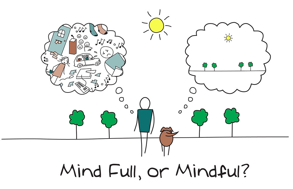 Invest in your mindful not mindfull, a coach can help