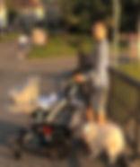 image1_edited_edited.jpg