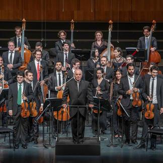 Kinnerth Suissa - The West-Eastern Divan Orchestra