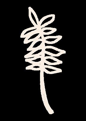 bloem plant-03.png