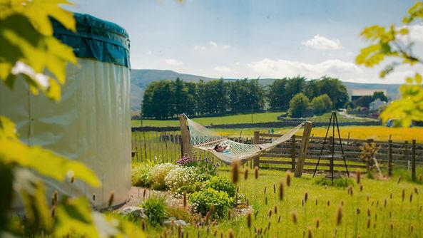 The yurt garden
