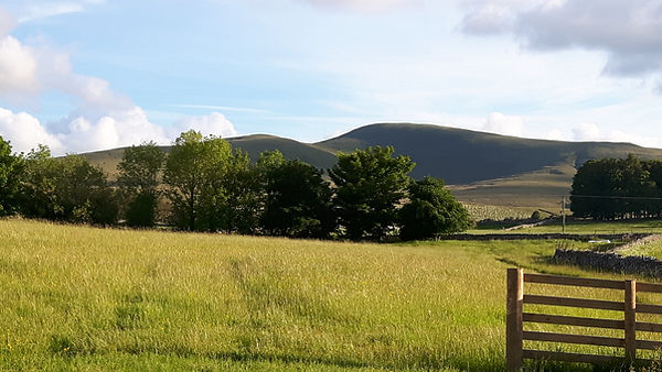 The meadow and Howgill Fells from the campfire