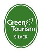 GT generic silver.jpg