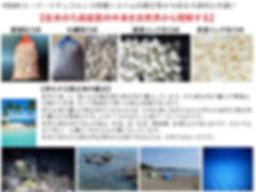 ろ過材の違い,ろ材の違い,サンゴ砂濾過,ろ過装置,ろ過設備,ろ過ポイント,濾過技術,ろ過微生物,浄化微生物,浄化技術,HONUMI,ホンマもんの海