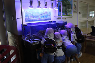 HONUMIアクアリウムを幼稚園へ。園児たちの笑顔と興味