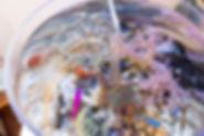 卓上サンゴ水槽,海水アクアリウム,サンゴ水槽,濾過無し水槽,卓上濾過無しサンゴ水槽,HONUMI,ホンマもんの海,水槽設備,無換水アクアリウム,無換水飼育,無換水水槽