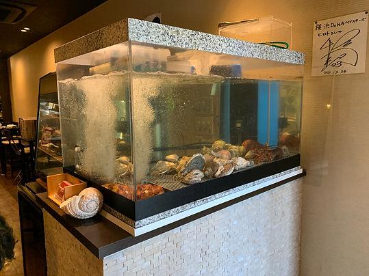 活魚水槽,生簀活魚水槽,活魚水槽製造販売,生簀水槽製造販売,業務用活魚水槽,活魚水槽メーカー