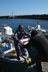 地元漁師舟から荷受け風景