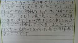感想文21.JPG