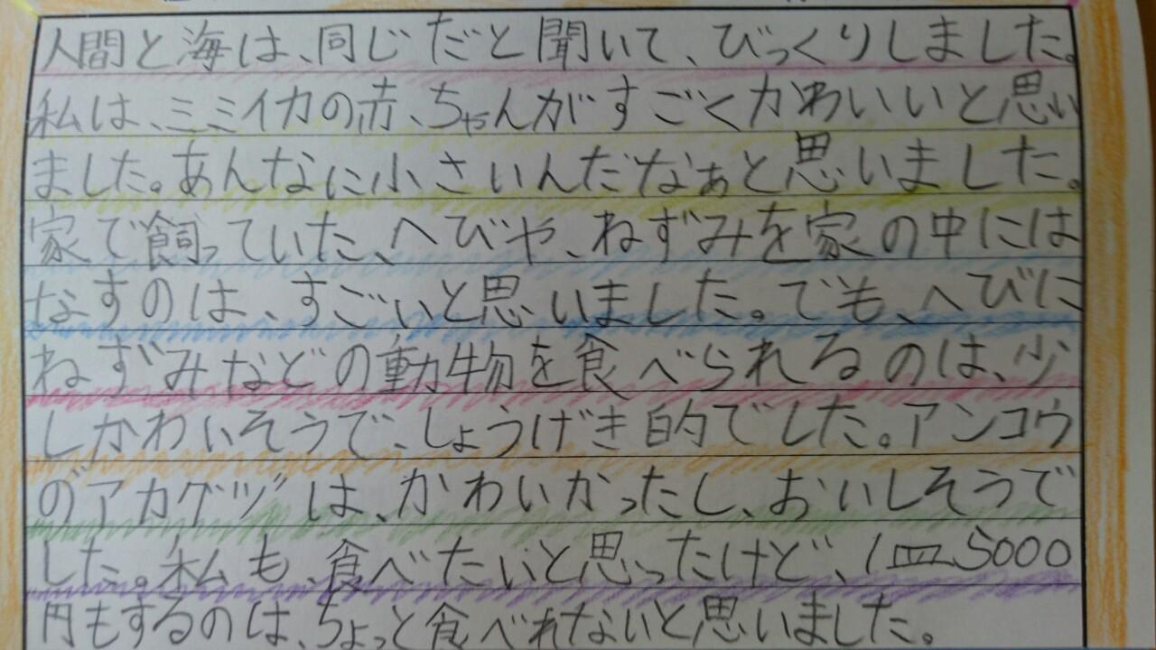感想文15.JPG