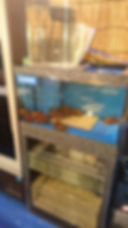 生簀、生簀水槽、活魚水槽、いけす活魚水槽、いけす水槽、生け簀水槽、生け簀活魚水槽