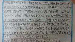 感想文6.JPG