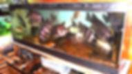生簀水槽,活魚水槽,いけす活魚水槽,いけす水槽,生け簀活魚水槽,水槽設備,HONUMI, ホンマもんの海
