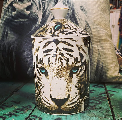 Tiger Canister Candle