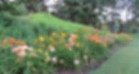 Pagoda Pond daylily border
