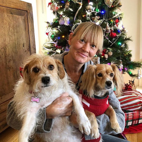 Are we presents_ Yes, best gifts ever! #caninemassage #dogmassage #gifts #lovedogs #doglovers #doghealth #holistichealing #holistichealth #l