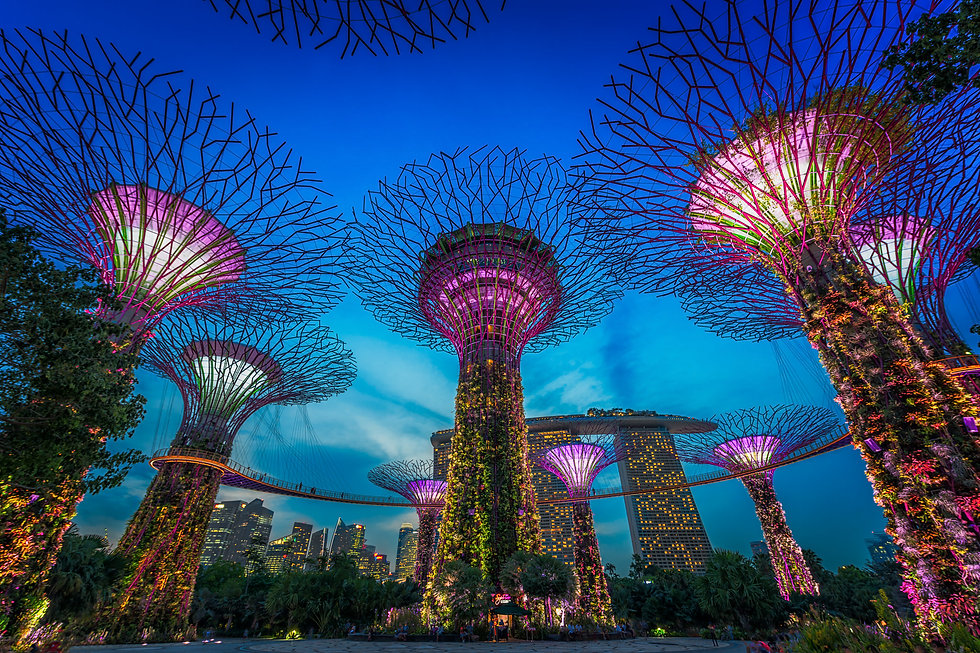 Singapore-Gardens-By-The-Bay-evening.jpg