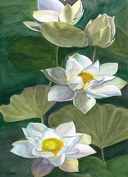 art031-pond flowers.jpg