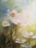 Daisy Day IMG_0159[10928][23058430092147