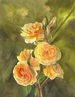 art017-yellow flowers.jpg