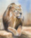 art024-lion.jpg