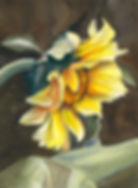 art009-sunflower.jpg
