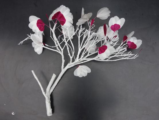 Branche - Analepse felt design