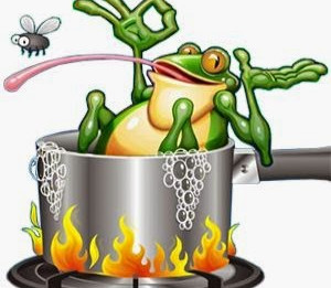 "How Your Organization can avoid the ""Boiling Frog"""