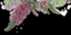 일러스트 꽃 2