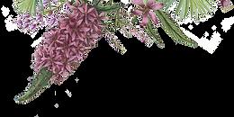 Flores ilustradas 2